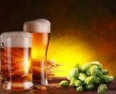 Birra grazie allo xanthohumol si dimostra efficace contro Alzheimer e Parkinson